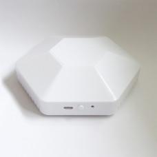 LW003-B Bluetooth LoRaWAN Probe