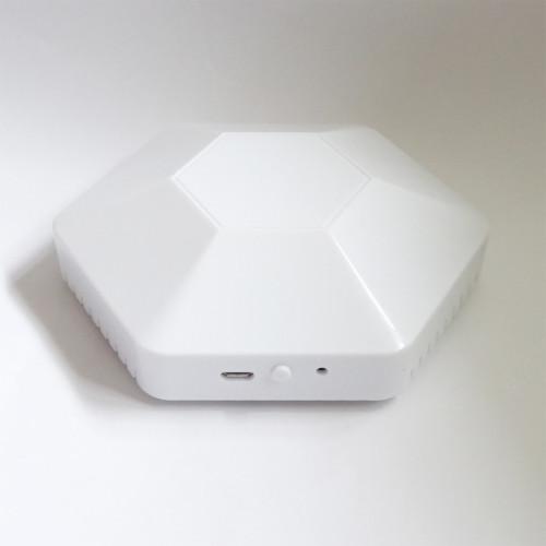 Bluetooth LoRaWAN Probe